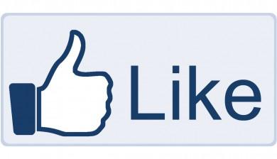 Facebook Like Status